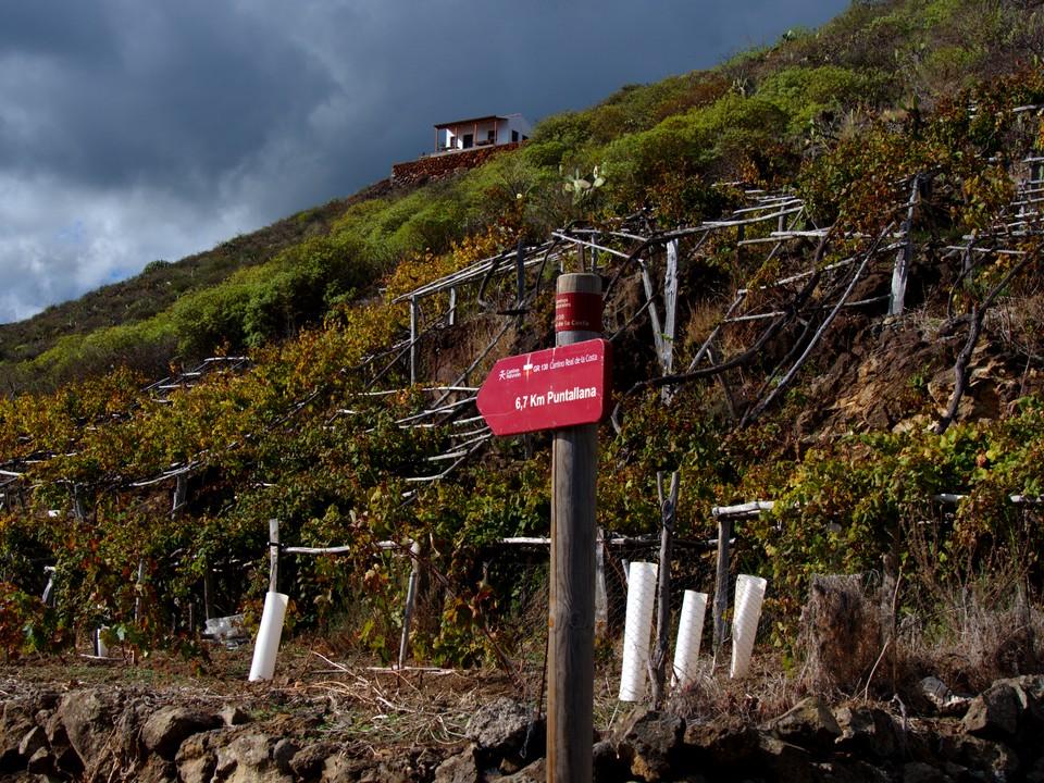 We want to head back uphill to Galga - the PR LP 5.1 Cubo de la Galga