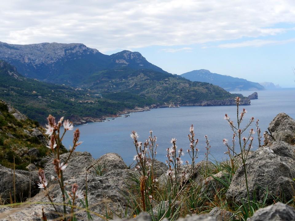 View along the coast to the headland Punta de Deia, and the mountain Puig Gros. One of the next walks.