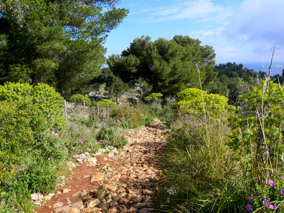 The path from Cap Gros