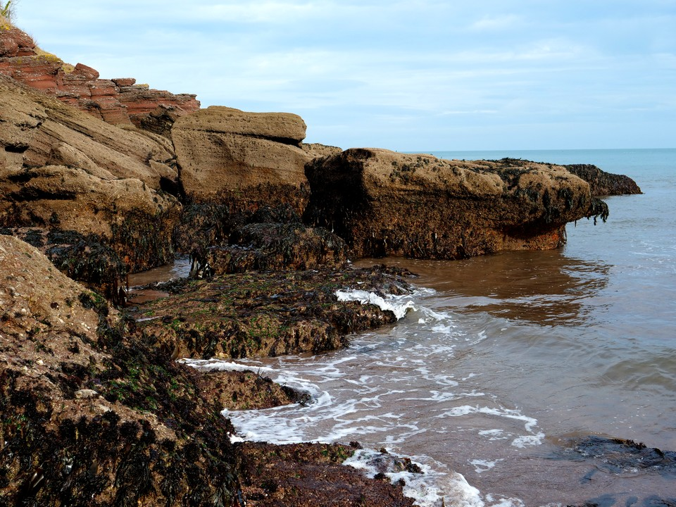 The seaweed covered rocks are worth a closer inspection