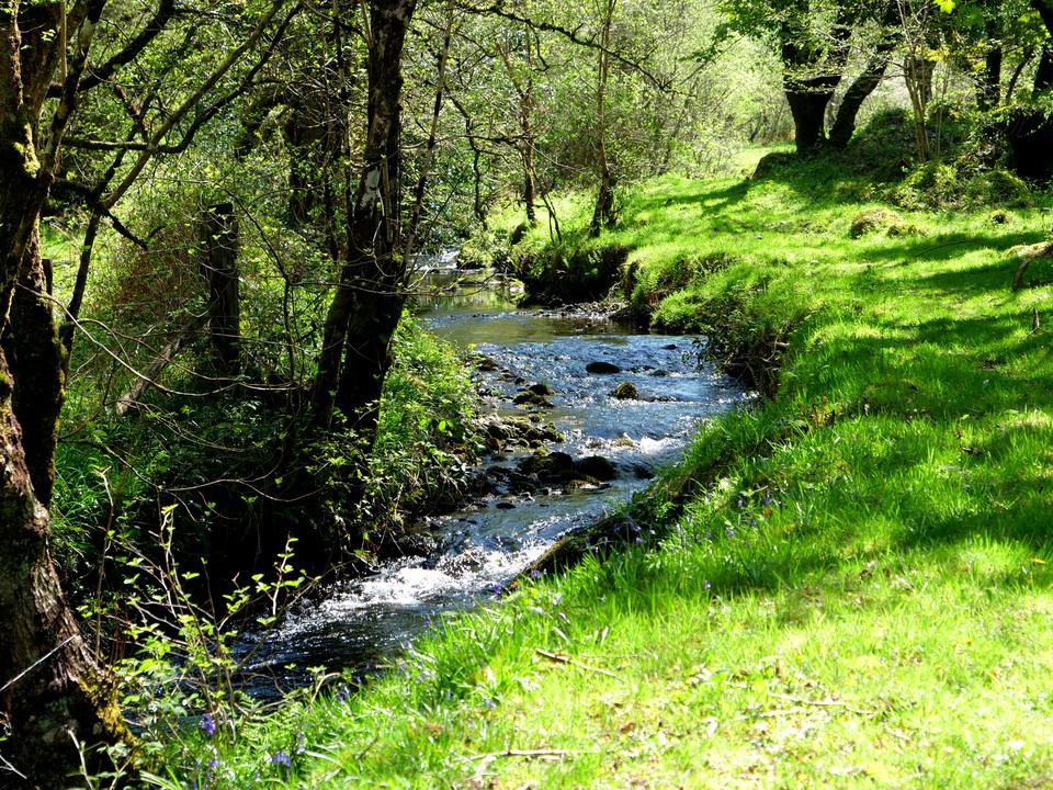 Crossing the Becka Brook