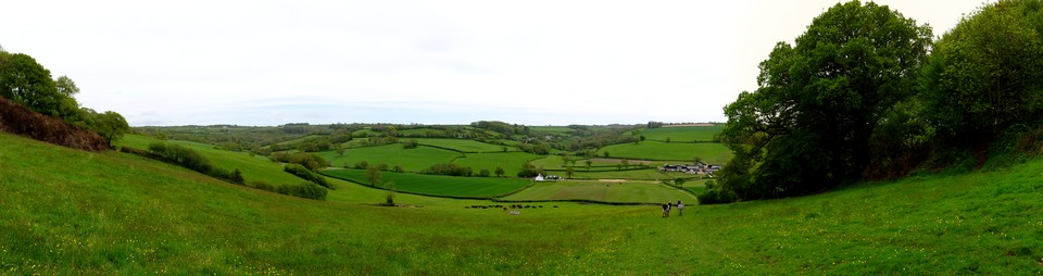 Panorama below Musbury Castle