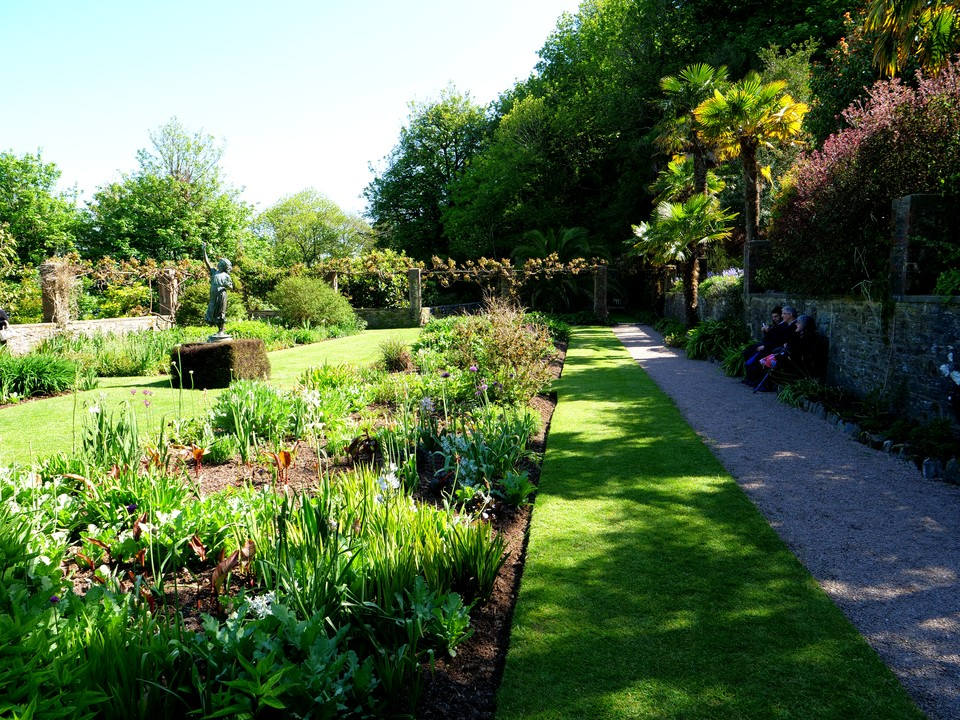 The herbaceous terrace, with Iris just coming into bloom