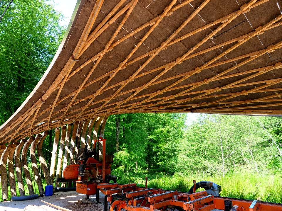 Another unusual roof created with timber in tension