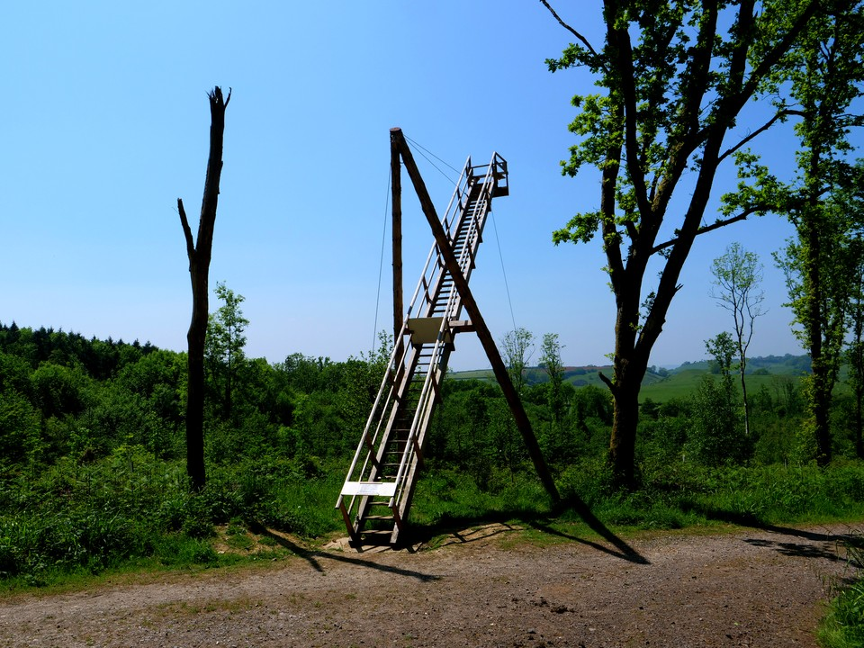 A ladder mounted on shear legs. That would make a very portable and quick way of sending the Roman troops over a city wall.