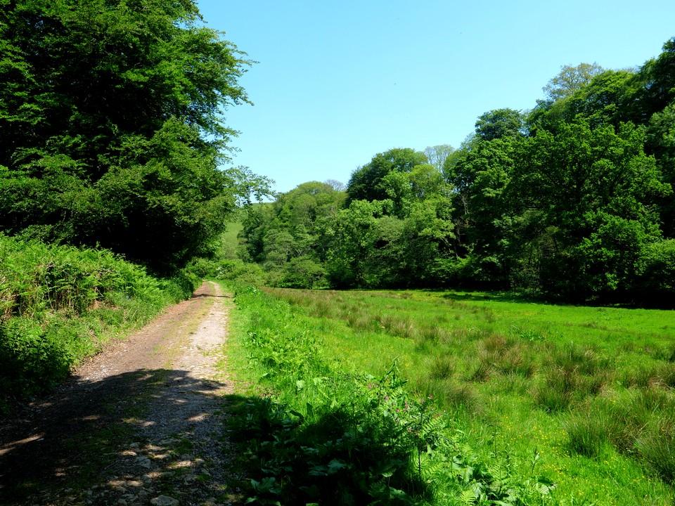 On the Jubilee Trail,