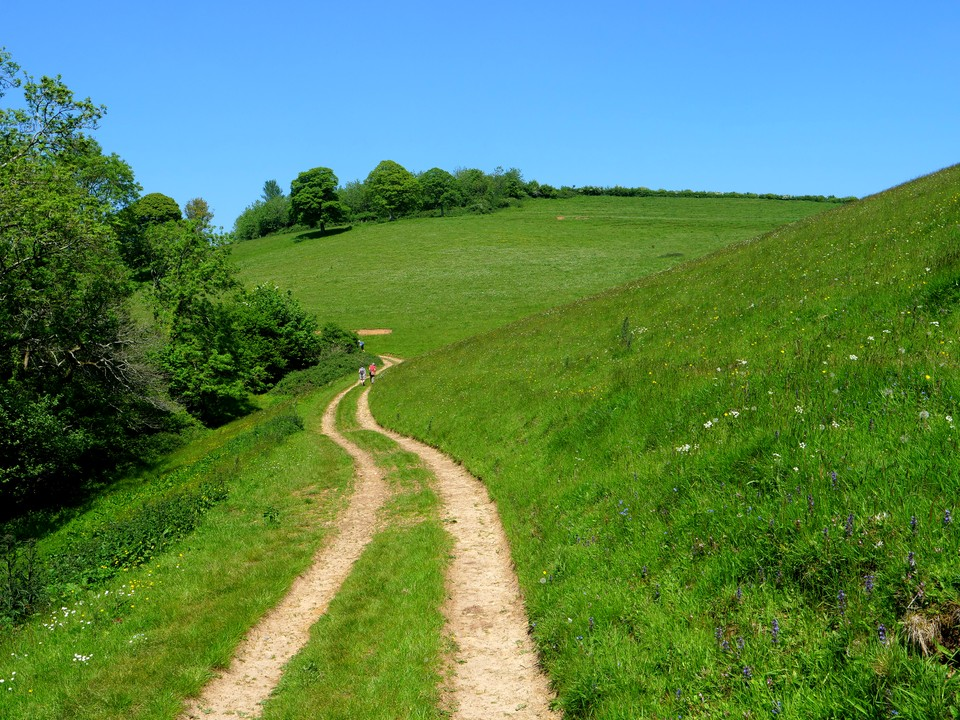 On the Jubilee Trail