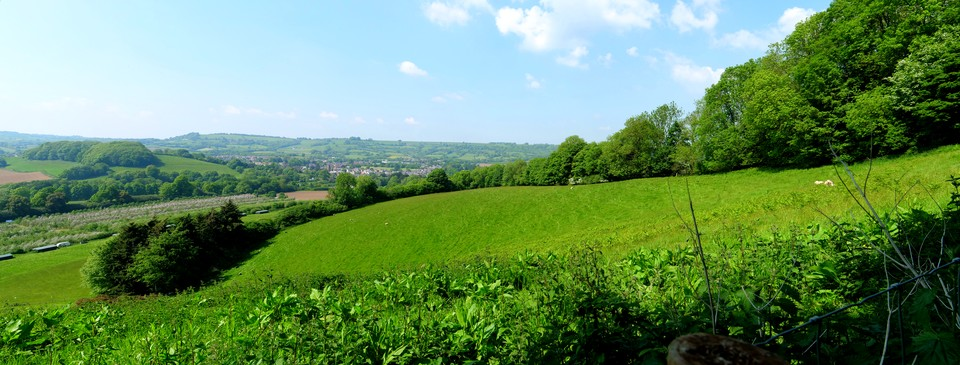 Panorama Beaminster: from Coombe Down Hill
