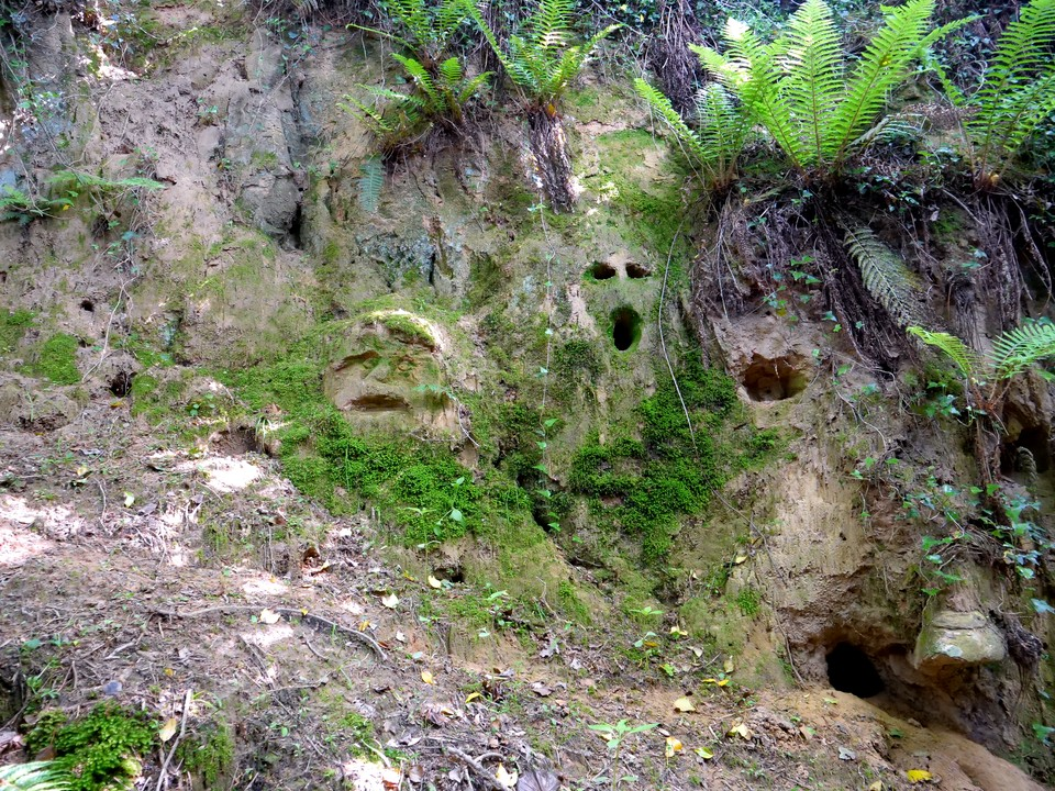 Someone has been having fun carving faces in the soft sandstone at Coombe Down