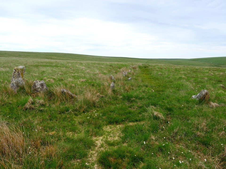 Stone circle and stone row on the edge of Stall Moor