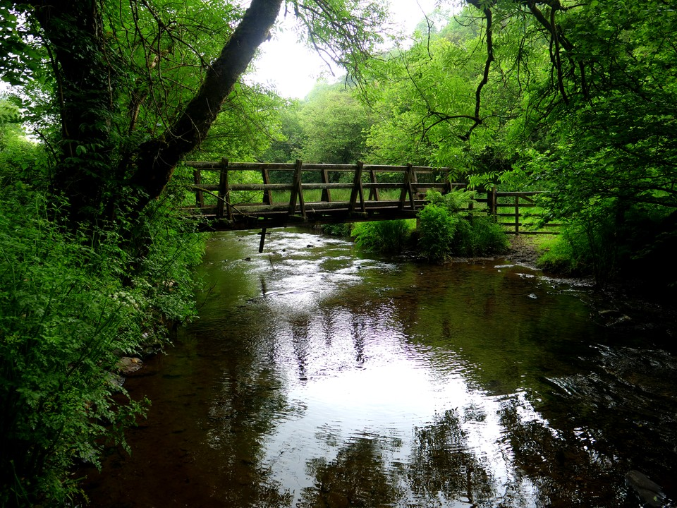 Bridge over the Pulham River