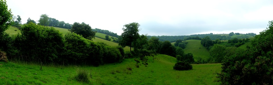 Panorama of a wooded valley at Venn