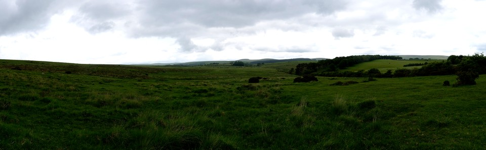 Moorland east of Riddon Ridge, looking north