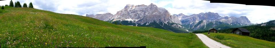 Panorama of alpine flowers path 22