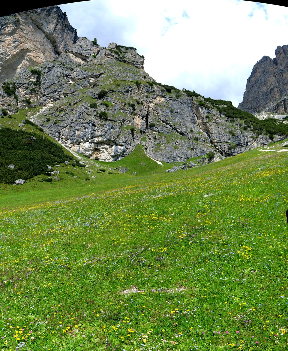 A flower covered meadow where the path goes up to the plateau, but we stay on the main track signed to the gondola