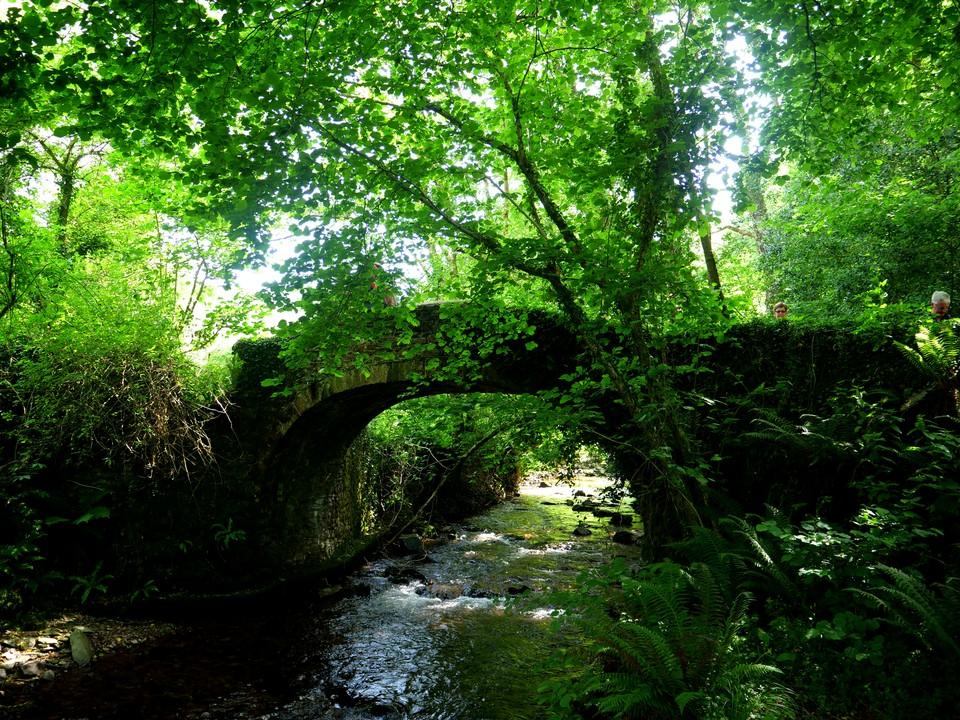 The packhorse bridge over Horner Water at Horner. Then followed the Coleridge Way back to Porlock.