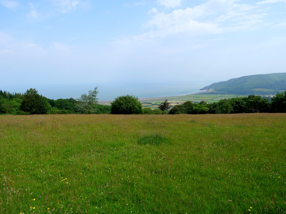We started this walk from Porlockford Bridge, joining the path from West Porlock to climb through Combe Meadow woodland, crossing the Porlock Hill Road at the top of Halse Combe, then up the river through Hawk Combe, past Lucott Farm