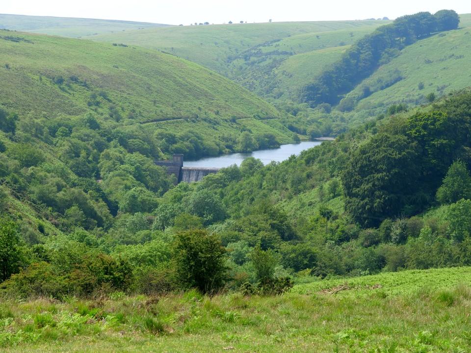 views of Nutscale Reservoir