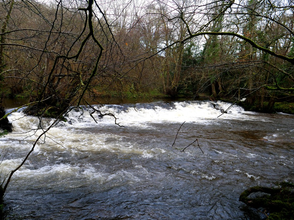 The River Teign near Steps Bridge
