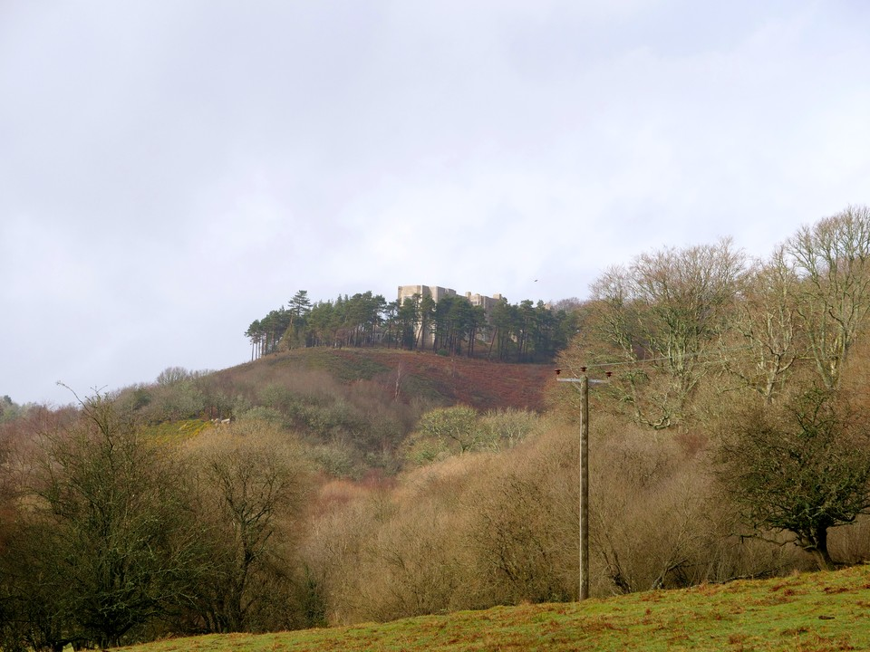 View of Castle Drogo from the deer park