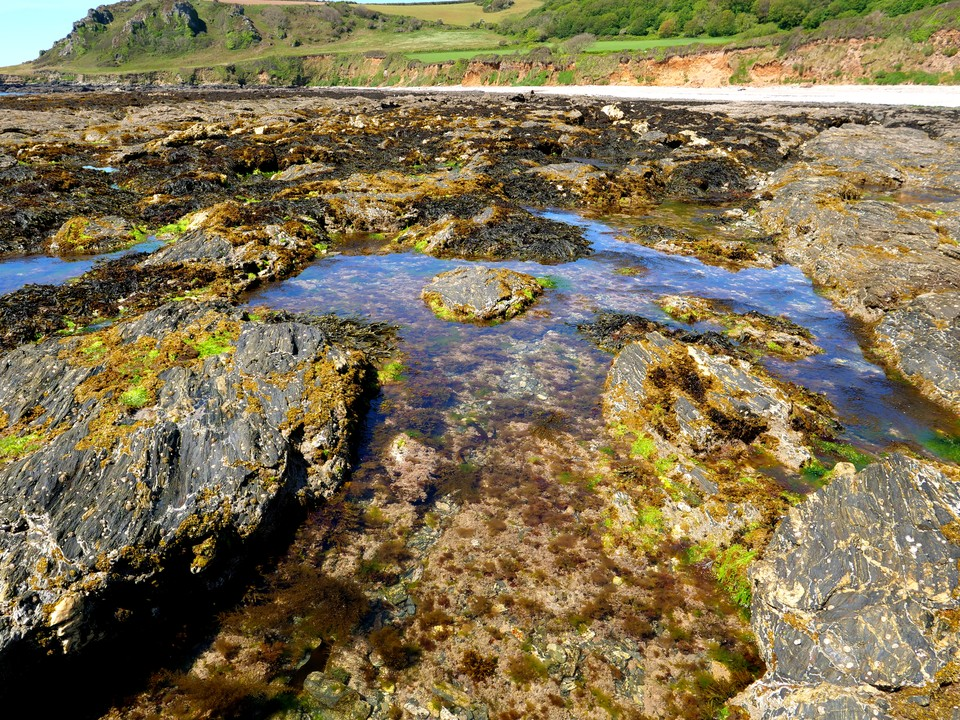 Rock pools on Maelcombe beach