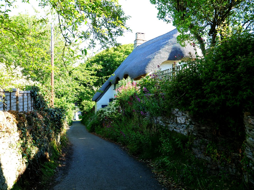 Walking part fo the South West Coast Path starting at Ringmore National Trust car park. 8 miles and Thatched cottage in the village