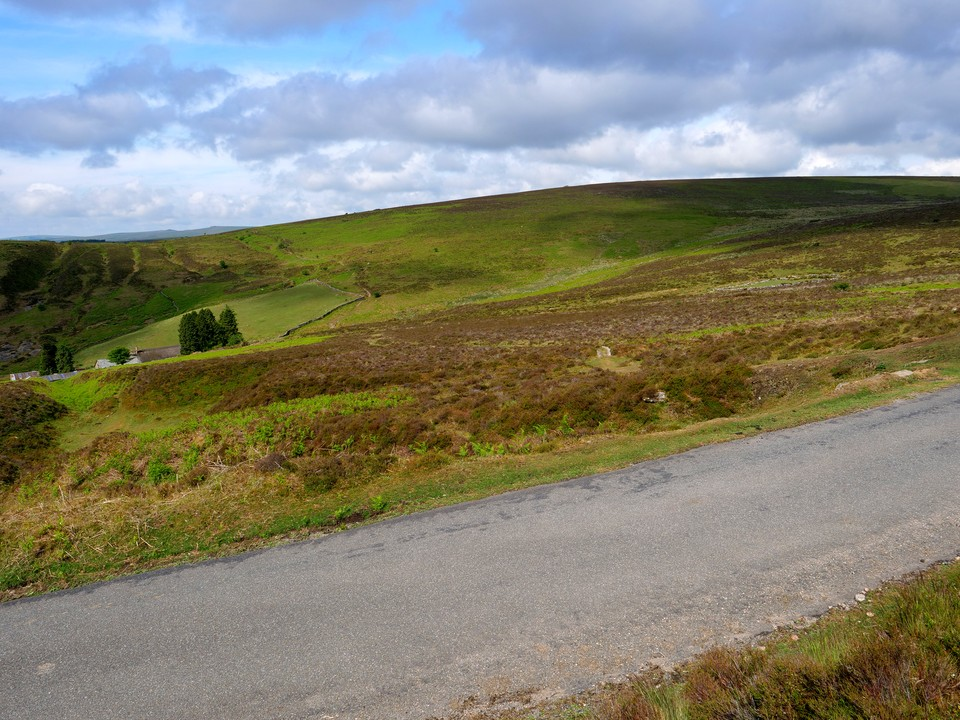 Cross the road and head towards Headland Warren Farm