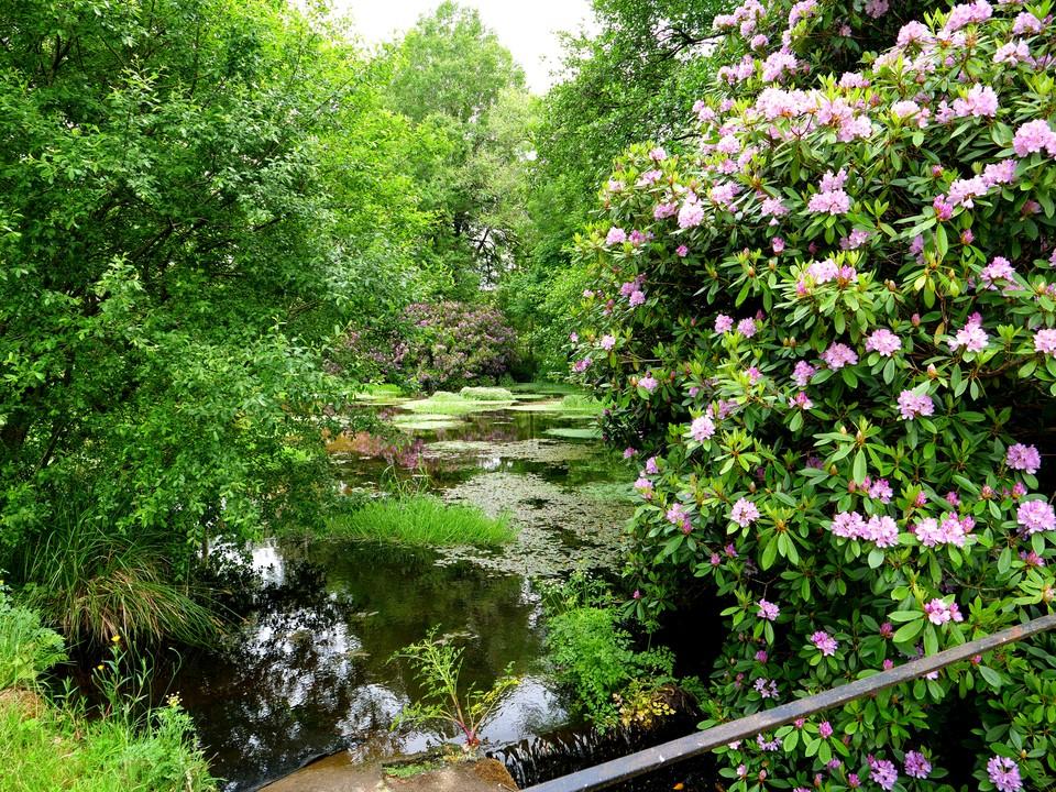 Cross the stream again at Broadaford