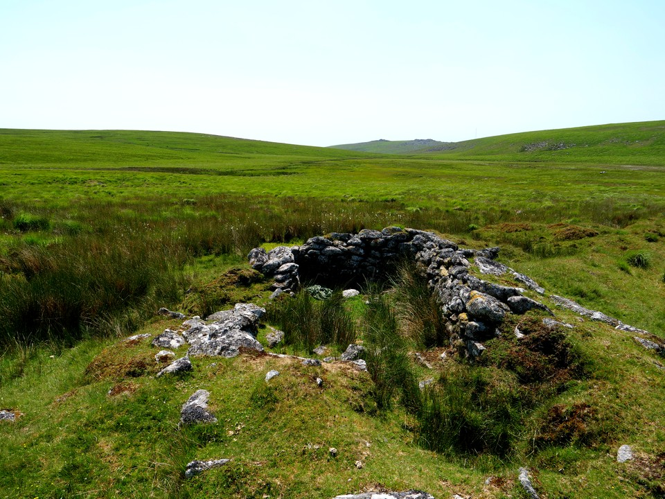 We went close to the ruins of Brown's House and the Tinners hut, before heading over towards Lower White Tor