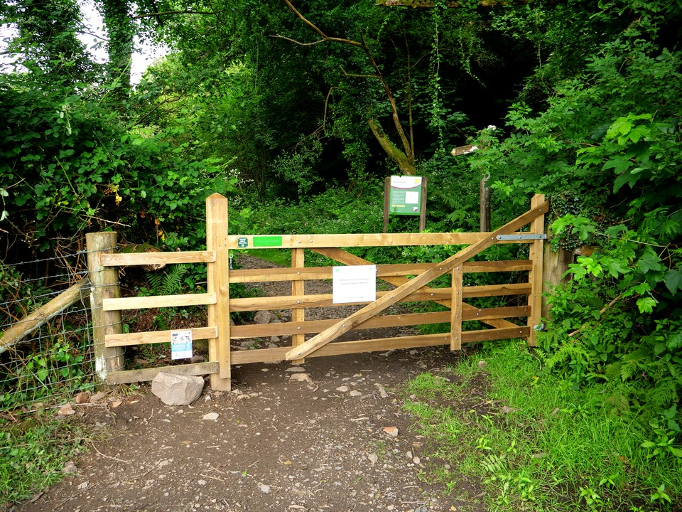 Into the nature reserve at Rudge Wood