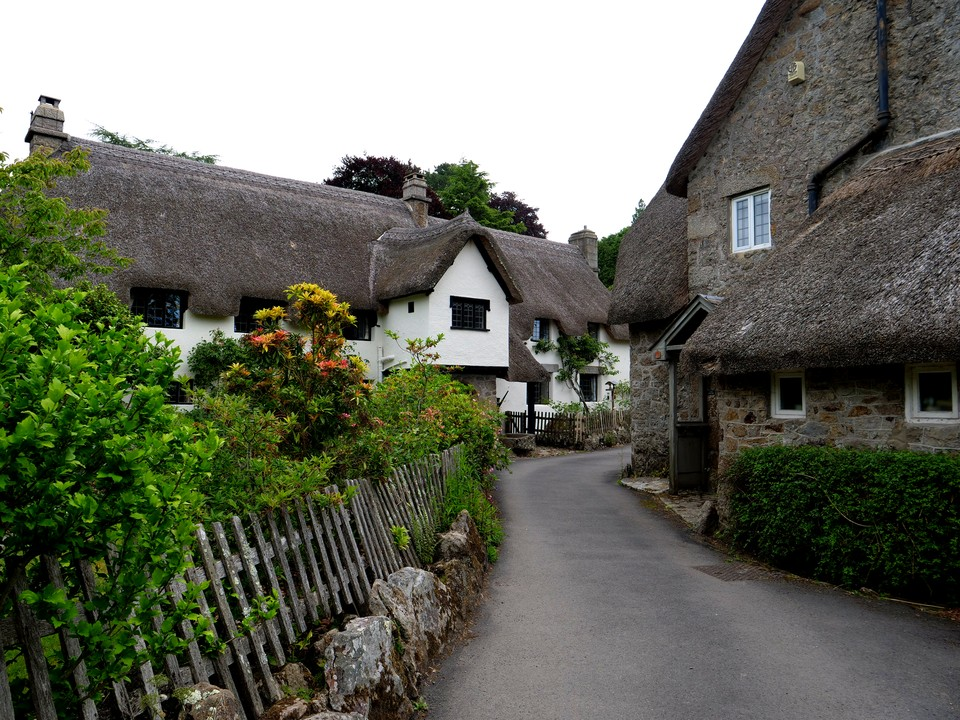 Thatched cottages at Wrayland