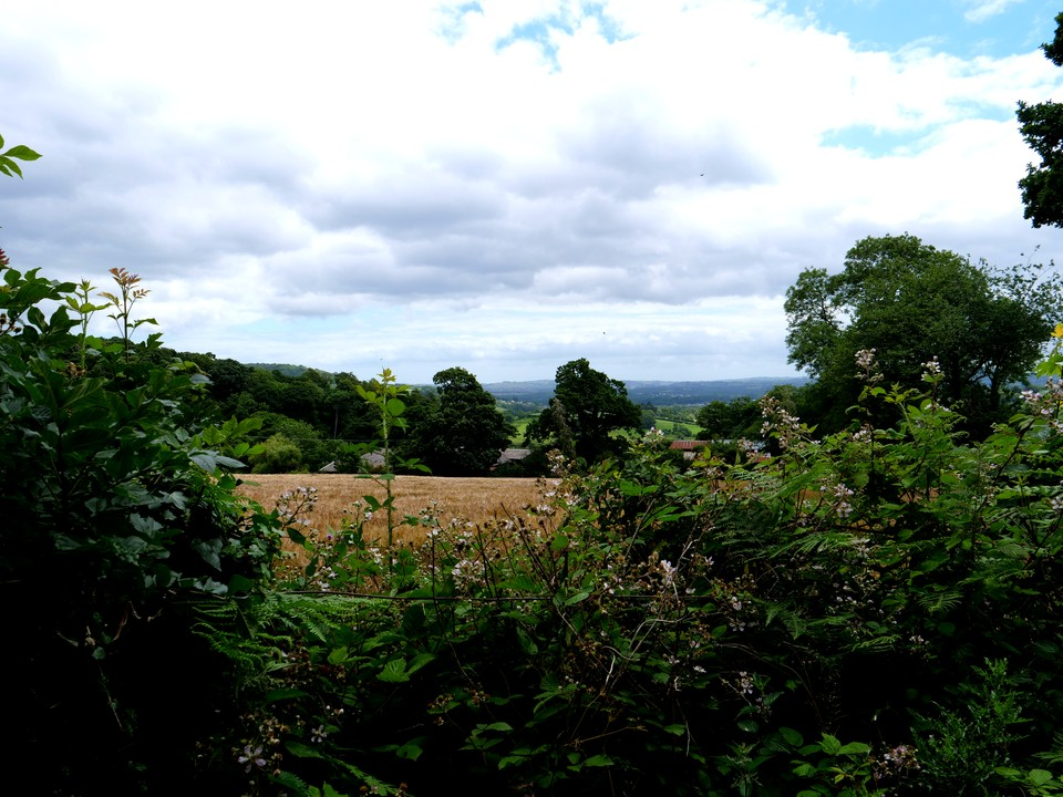 Then down the byway to Knowle