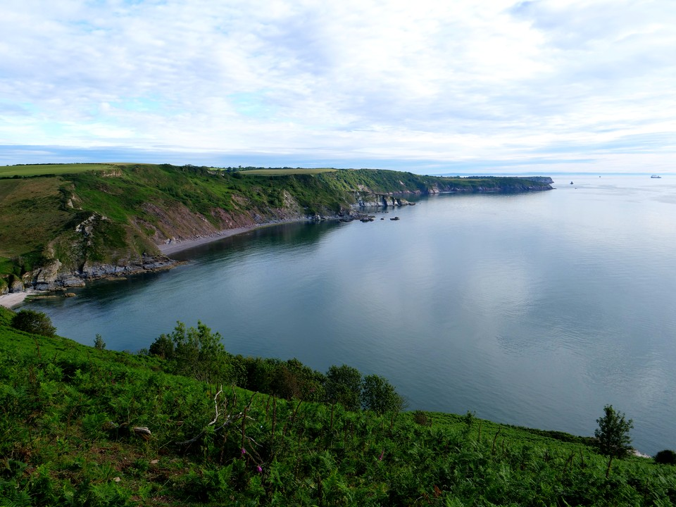 A 6 mile walk (but strenuous )from Coleton Camp NT car park, near Coleton Fishacre. View of Sharkham Point from Scabbacombe Head on a tranquil July morning