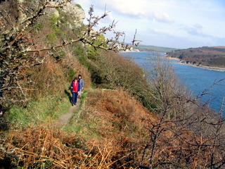 2004-02-18-13-20-34_walk-salcombe-18-feb-2004-008_walk-salcombe-18-feb-2004.jpg  walk salcombe 18 Feb 2004