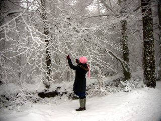 2013-01-23-15-03-24_p1090826_2013-01-23-snow-on-mamhead-haldon.jpg  Snow holds a fascination for this young woman. I'm glad she decided to wear the pink hat and scarf.A winter wonderland as snow outlines every branch in the forest