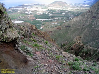 tenerife-nov-2003-136.jpg  Walking in the Teno Mountains of Tenerife