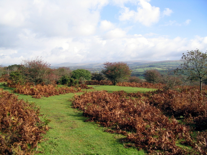 walk double waters yelverton 17th Oct 04 walk double waters yelverton 17th Oct 04