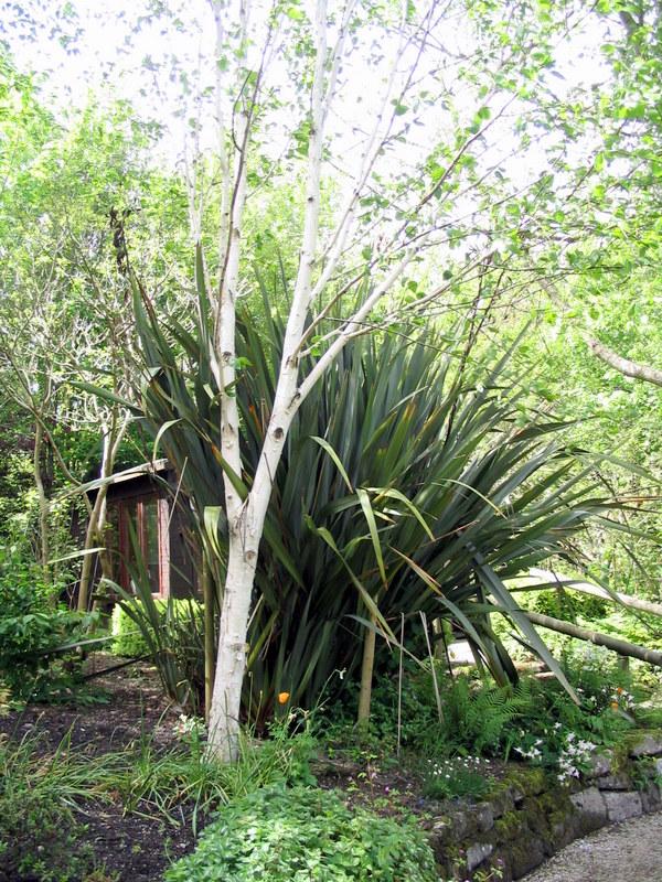 garden_marsh_villa_may_05 garden_marsh_villa_may_05