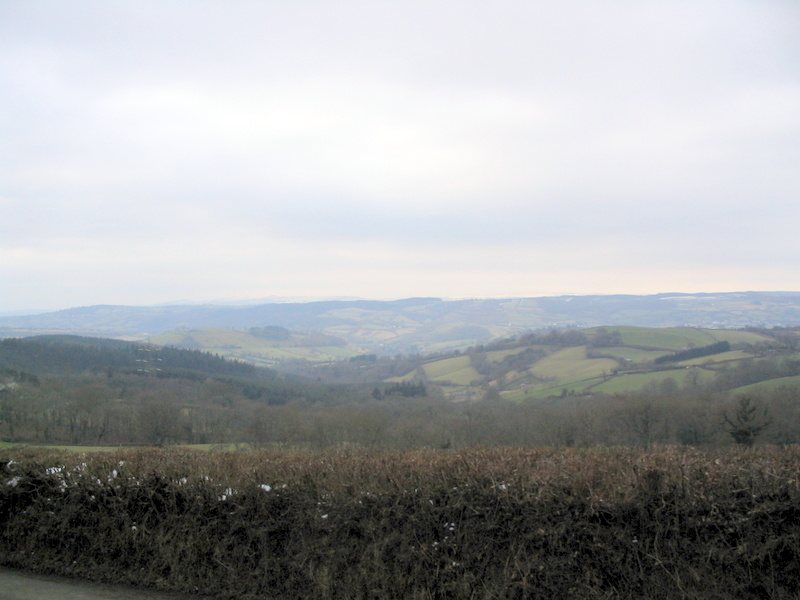 chagfordcommon_shapley_coombe_down chagfordcommon_shapley_coombe_down
