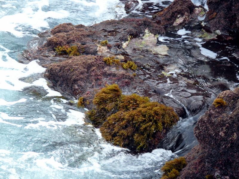 Lanzarote Tenesar Rock Pools Lanzarote Tenesar Rock Pools