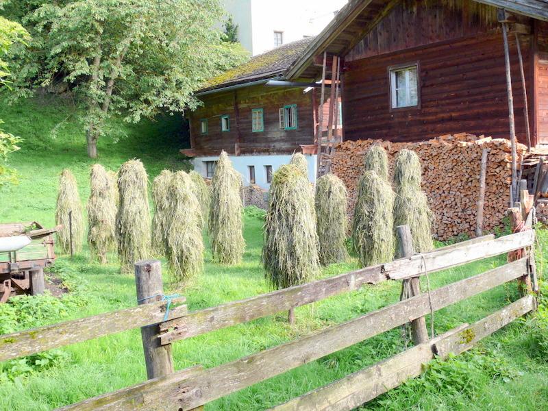 Hotel Alpina Schwendau Mayrhofen Zillertal Austria Hotel Alpina Schwendau Mayrhofen Zillertal Austria