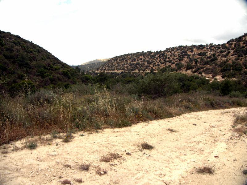 Track to the gorge, Alekhtora to Khapotami Gorge, Walking Cyprus.  Alekhtora Khapotami Gorge Kato Arkhimandrita 2010-04-30