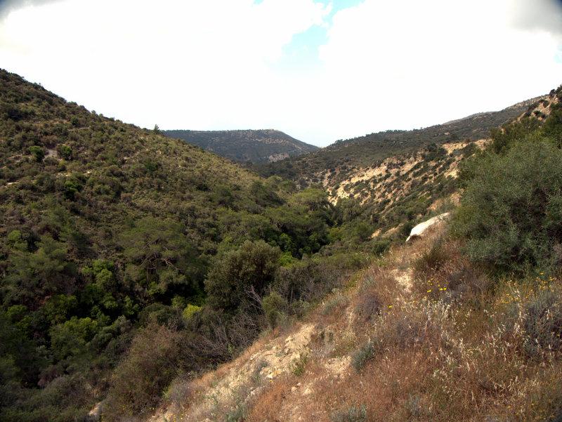 View of the gorge, Alekhtora to Khapotami Gorge, Walking Cyprus.  Alekhtora Khapotami Gorge Kato Arkhimandrita 2010-04-30