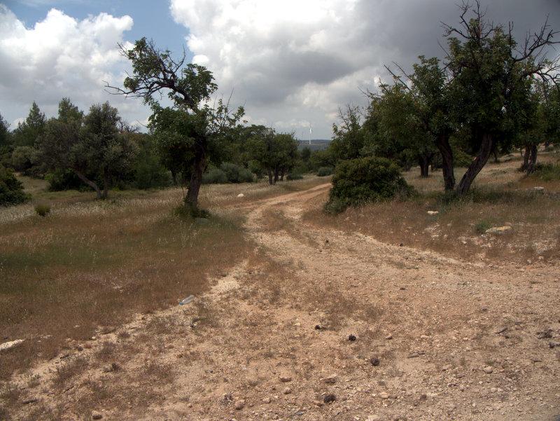 Scrubland Kato Archimandrita to Alekhtora , walking Cyprus  Alekhtora Khapotami Gorge Kato Arkhimandrita 2010-04-30