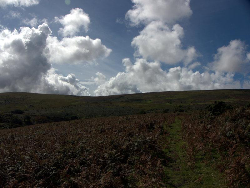 Path over Holne Moor  Venford Reservoir Michelcombe Scoriton Deer Farm Holne Moor Dartmoor 2010-09-07
