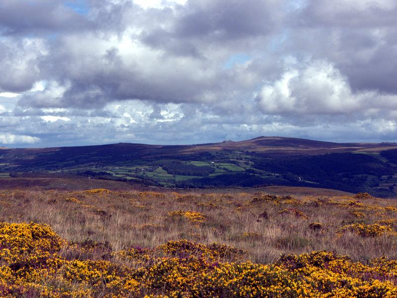 View towards Hay Tor from Holne Moor  Venford Reservoir Michelcombe Scoriton Deer Farm Holne Moor Dartmoor 2010-09-07