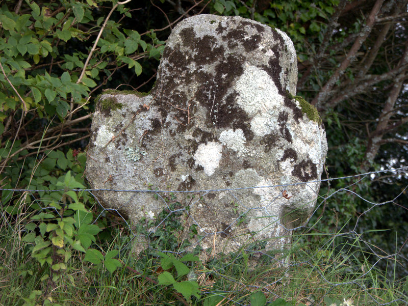 Ancient Cross , Leapra Cross, Dartmoor.  Kings Oven Metherall Hurston Lettaford West Coombe Hookney Tor 2010-09-08
