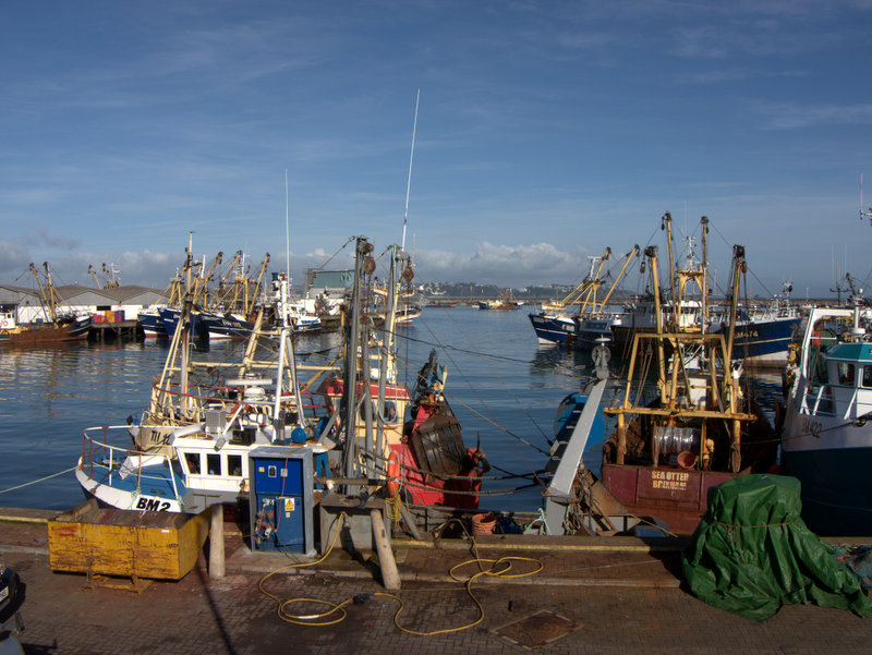 The fishing harbour at Brixham  Brixham is a busy fishing port and there is a good viewing platform to see what is going on